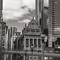 Chicago Crosswalk  by John McGraw