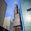 Chicago Downtown City Buildings With Willis-sears Tower by Paul Velgos