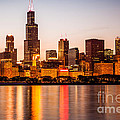 Chicago Downtown City Lakefront With Willis-sears Tower by Paul Velgos
