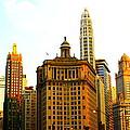 Chicago Glow by Yajhyara Maria