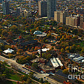 Chicago Lincoln Park Zoo by Thomas Woolworth