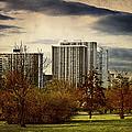 Chicago Neighborhood by Milena Ilieva