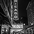 Chicago Nights by Terry Rowe