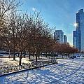 Chicago Park by Nikki Watson    McInnes