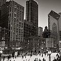 Chicago Park Skate Bw by Steve Gadomski