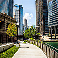 Chicago Riverwalk Picture by Paul Velgos