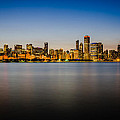 Chicago Skyline At Sunset by Anthony Doudt