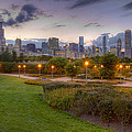 Chicago Skyline by Lindley Johnson