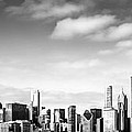 Chicago Skyline Panoramic Black And White Picture by Paul Velgos