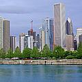 Chicago Skyline by Suzanne Gaff