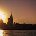 Chicago Skyline V by Margie Hurwich