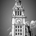 Chicago Wrigley Building Clock Black And White Picture by Paul Velgos