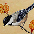 Chickadee And Autumn Leaves by Crista Forest