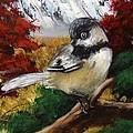 Chickadee by Brandon Lovell