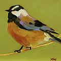 Chickadee Iv by Sue  Darius