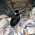 Chickadee On A Sneaker by Judith Rice