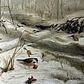 Chickadees by Eldora Schober Larson