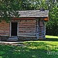 Chickamauga Cabin by Elvis Vaughn