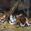 Chicken Coop Circa 1880 by David Lloyd Glover