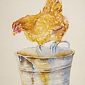 Chicken Feed by Debra Hall