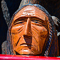Chief Looking by David Lee Thompson