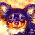 Chihuahua Art by Iain McDonald
