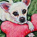 Chihuahua Who Came To Visit by Rebecca Korpita