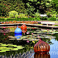 Chihuly Ball Lily Pond by Luther Fine Art
