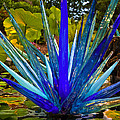 Chihuly Lily Pond by Diana Powell