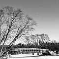 Chilly Walk by Larry Jones