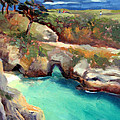 China Cove Point Lobos by Karin  Leonard