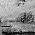 Chincoteague Island Infrared Pano by Jack Nevitt