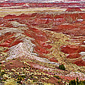 Chinde Point In Painted Desert In Petrified Forest National Park-arizona by Ruth Hager