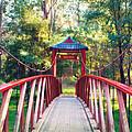 Chinese Bridge Wandiligong by Linda Lees
