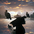 Chinese Fisherman With Cormorant by Buena Vista Images