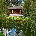 Chinese Garden Dream by Jamie Pham