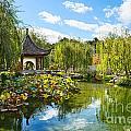 Chinese Garden Vista by Jamie Pham
