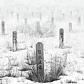 Chinese Grave Markers by Theresa Tahara