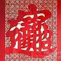 Chinese Ornamental Character by Yali Shi