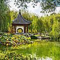 Chinese Pagoda by Jamie Pham