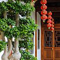 Chinese Red Lanterns by Nicolas Van Weegen