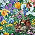Chipmunk Garden by Sandy Williams