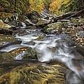 Chippewa Creek In Fall by Jerry Jelinek