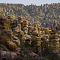 Chiricahua National Park - The Grotto 02 by George Bostian
