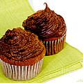 Chocolate Cupcakes by Iris Richardson