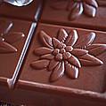 Chocolate Flower  by Rona Black