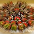Chocolate Strawberry Rush by Susan Candelario