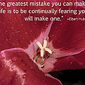 Choose Your Quote Choose Your Picture 8 by Michele Penn