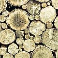 Chopped Wood by Tom Gowanlock