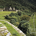 Choquequirao Inca Terraces by James Brunker
